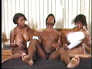 Ebony Ayes & Purple Passion